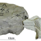 German researchers scan and 3D print dinosaur fossil